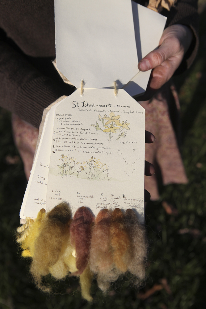 The Magic St. Johns Wort Page In My Dye Sample Book