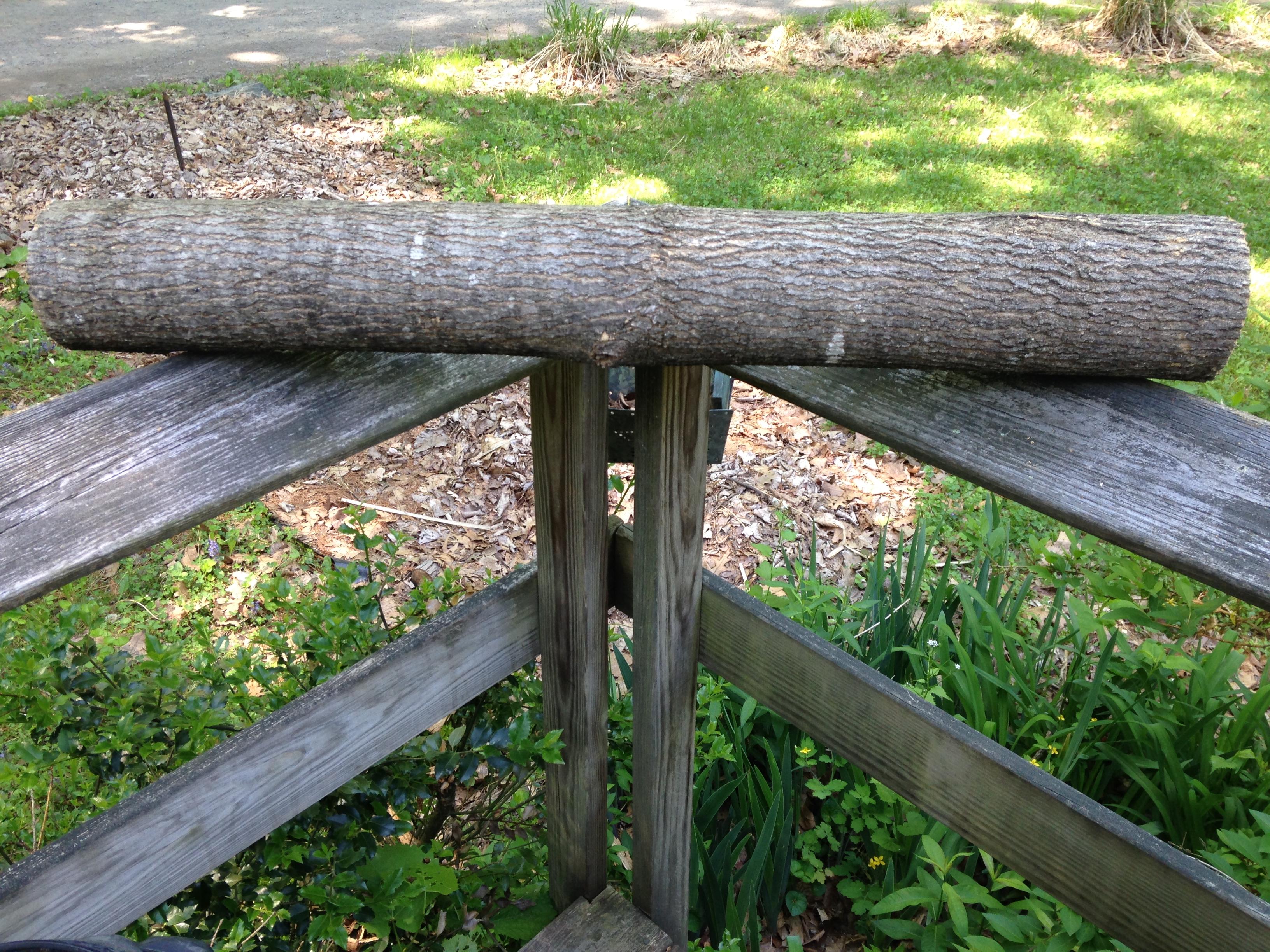 ash bark basketry log 3