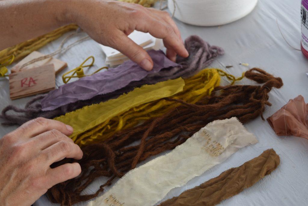Black walnut, Merigold, sumac plant I samples