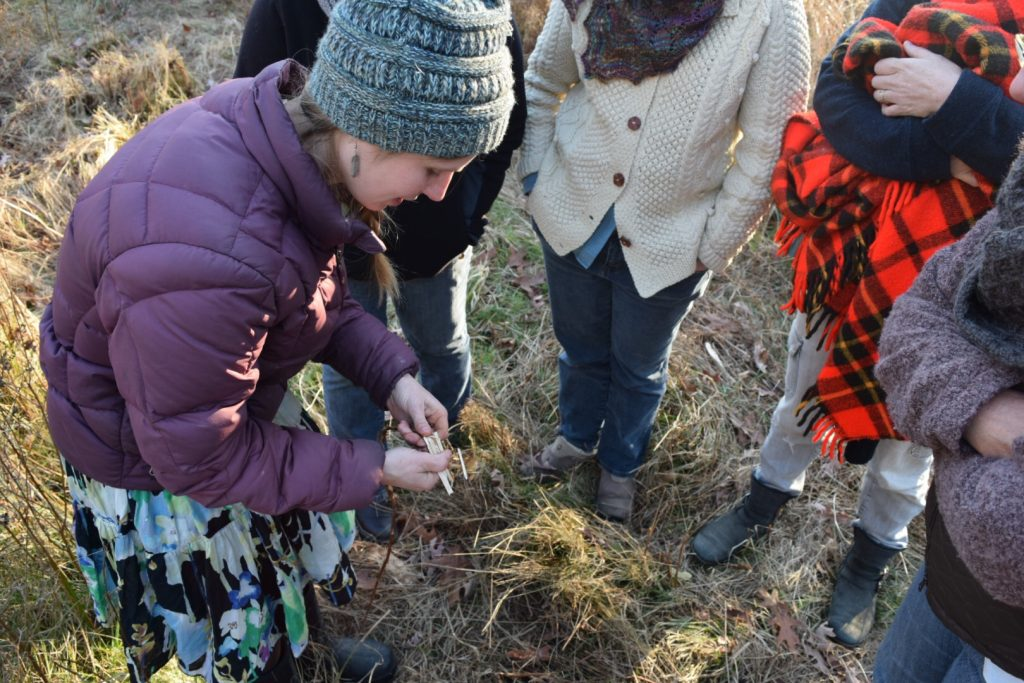demonstrating the processing of dogbane stalks
