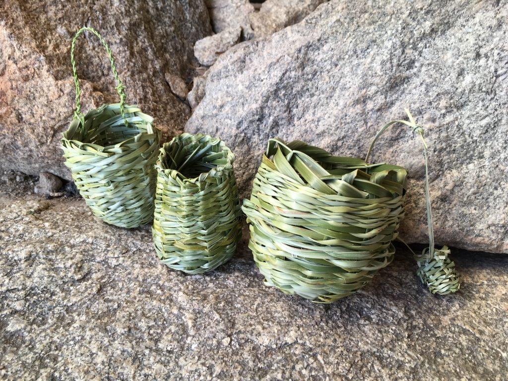Twined beargrass baskets made by me and a friend at Granite Mountain, AZ