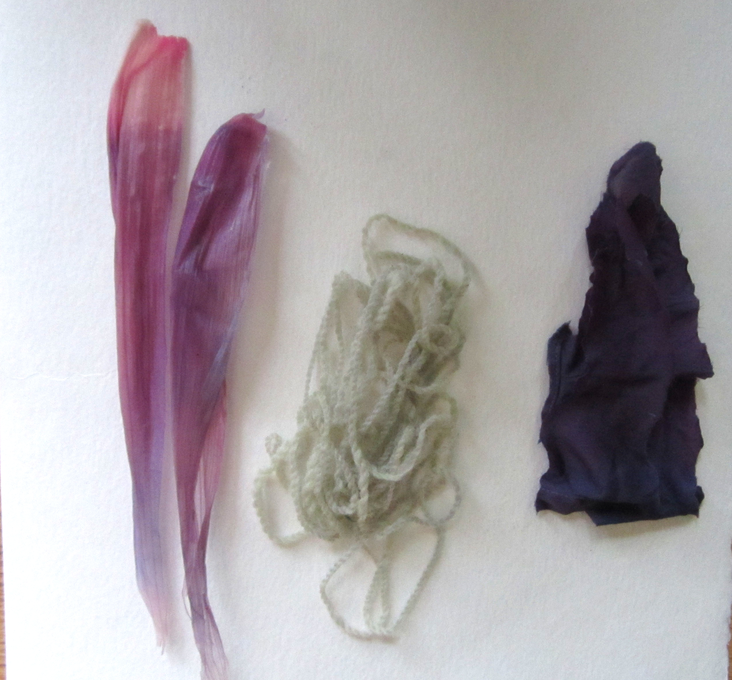 From right to left: cornhusks, wool, and silk dyed with red cabbage