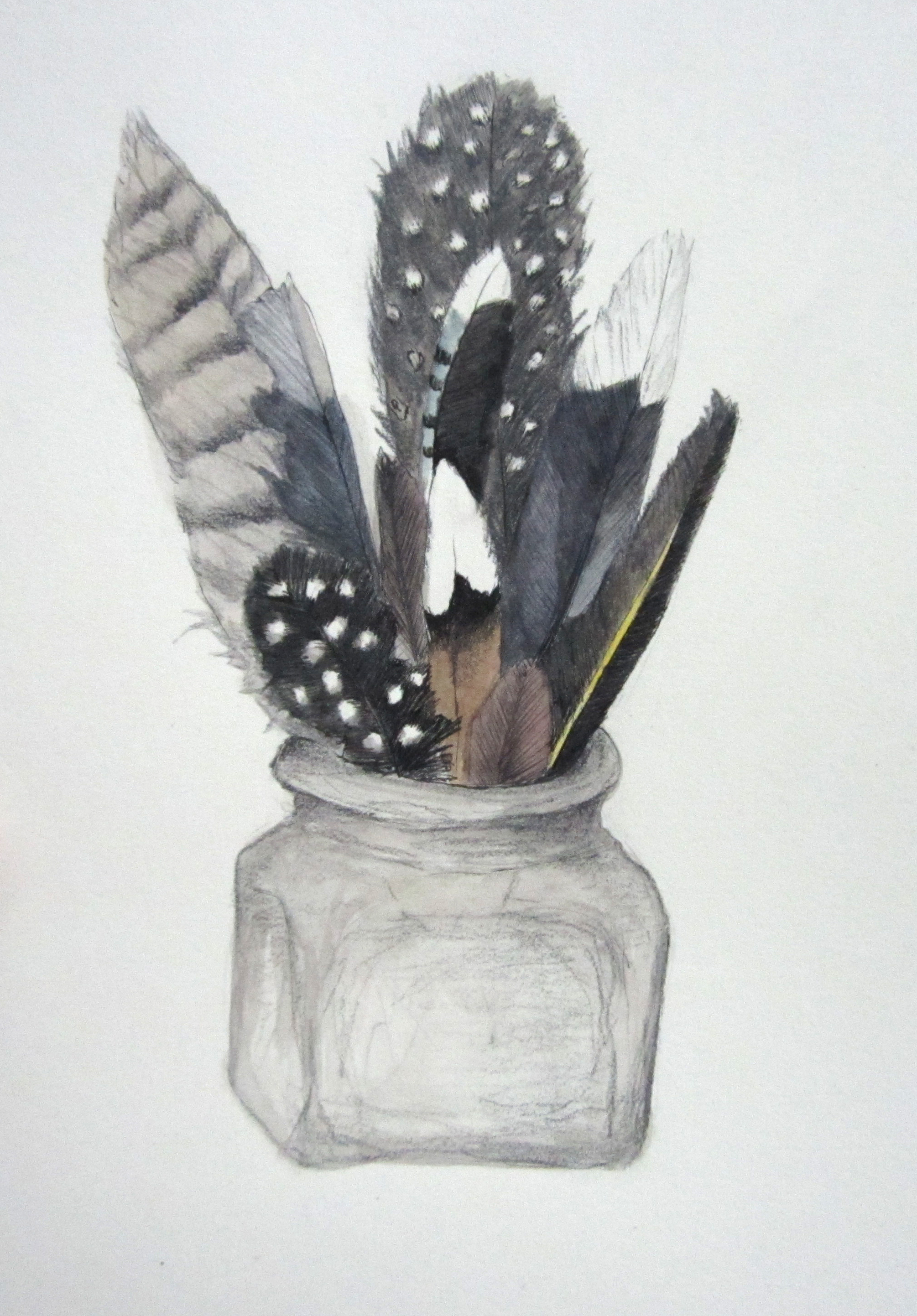 """Feathers in a Jar"", watercolor and pencil, 10"" x 10"""