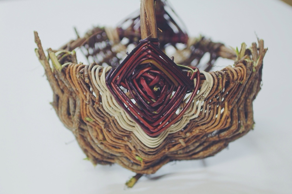 Wild Earth 2013 Basketry Series