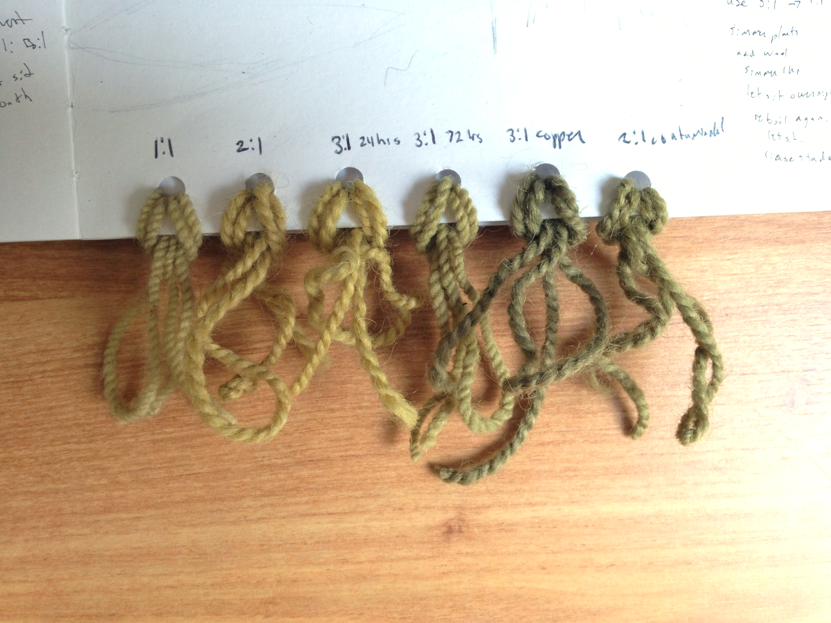 nettle dye, natural dyes, sample pieces, stinging nettle plant dye