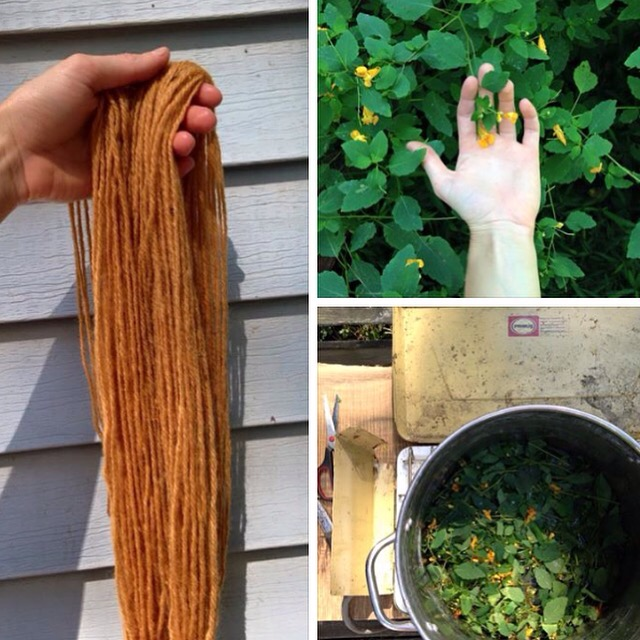 Plant Dye Recipe And Tutorial: How To Make A Jewelweed Dye