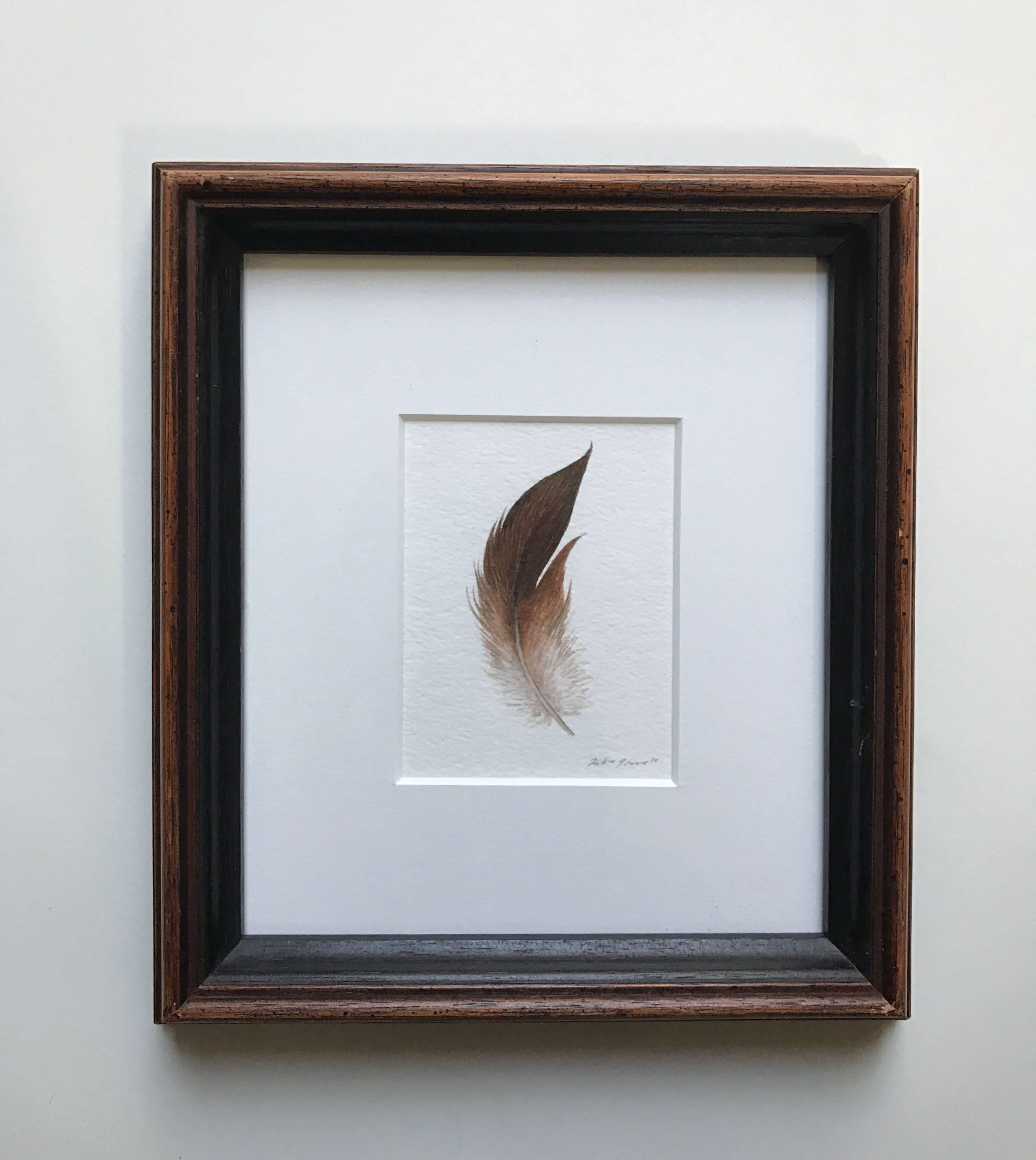 "Auburn Feather/ Watercolor In A Vintage Gold Painted Frame/ 7 1/4"" X 8 1/4"" / $135"