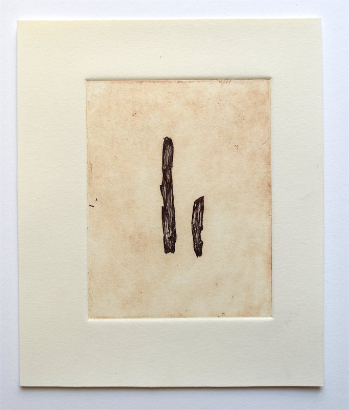 """Grapevine Bark, 5"""" x 6"""", etching, edition of 4, $35.00"""