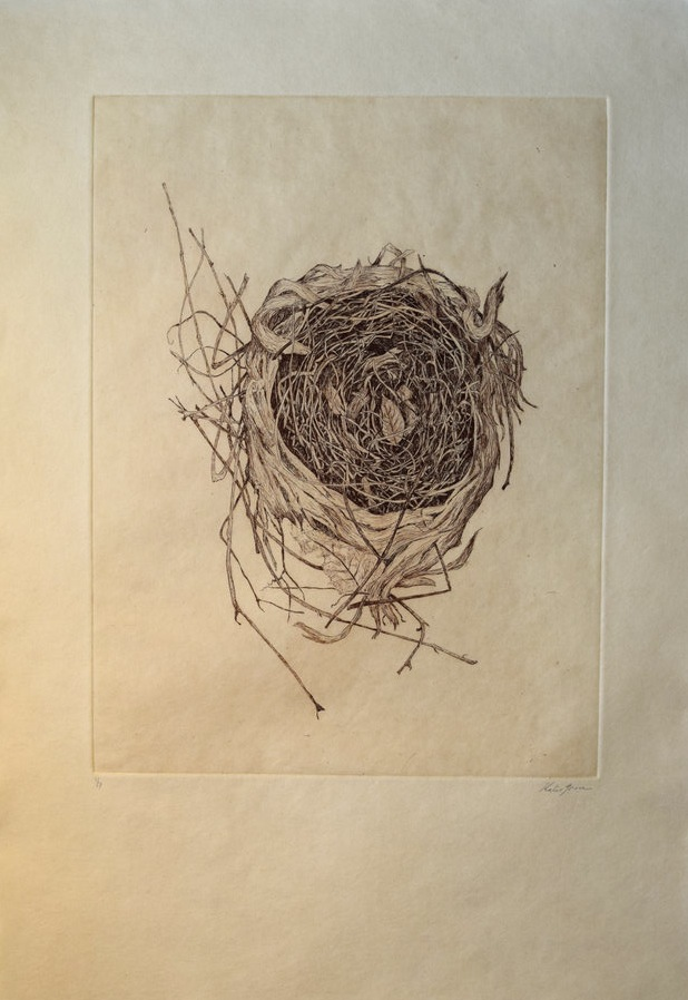"""Nest, 14"""" x 18"""", etching, edition of 7. $145"""