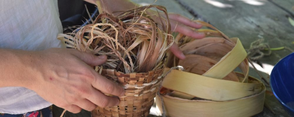 Cordage And Bark Splints