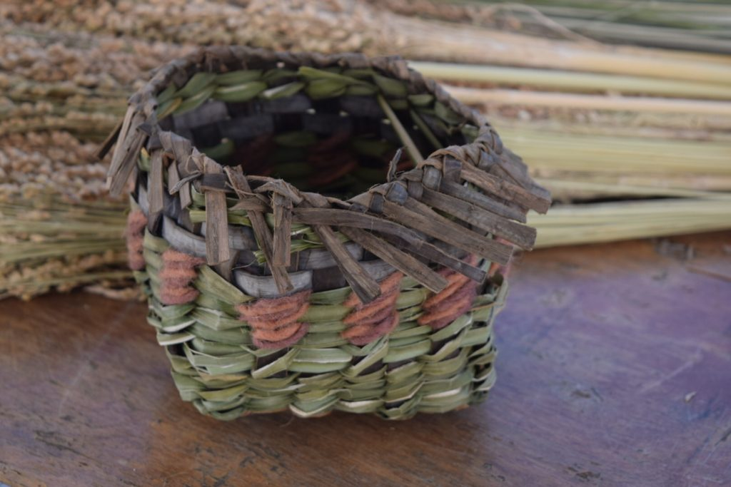 Twined basket with cattails, yarn, and black walnut park