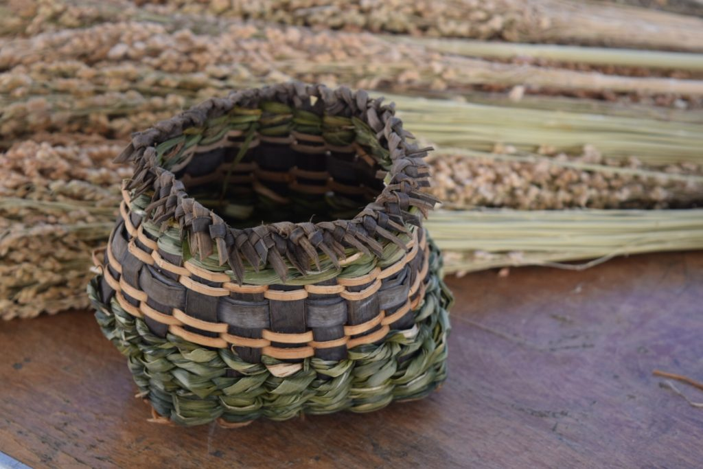 Twined cattail and Iris leaf basket