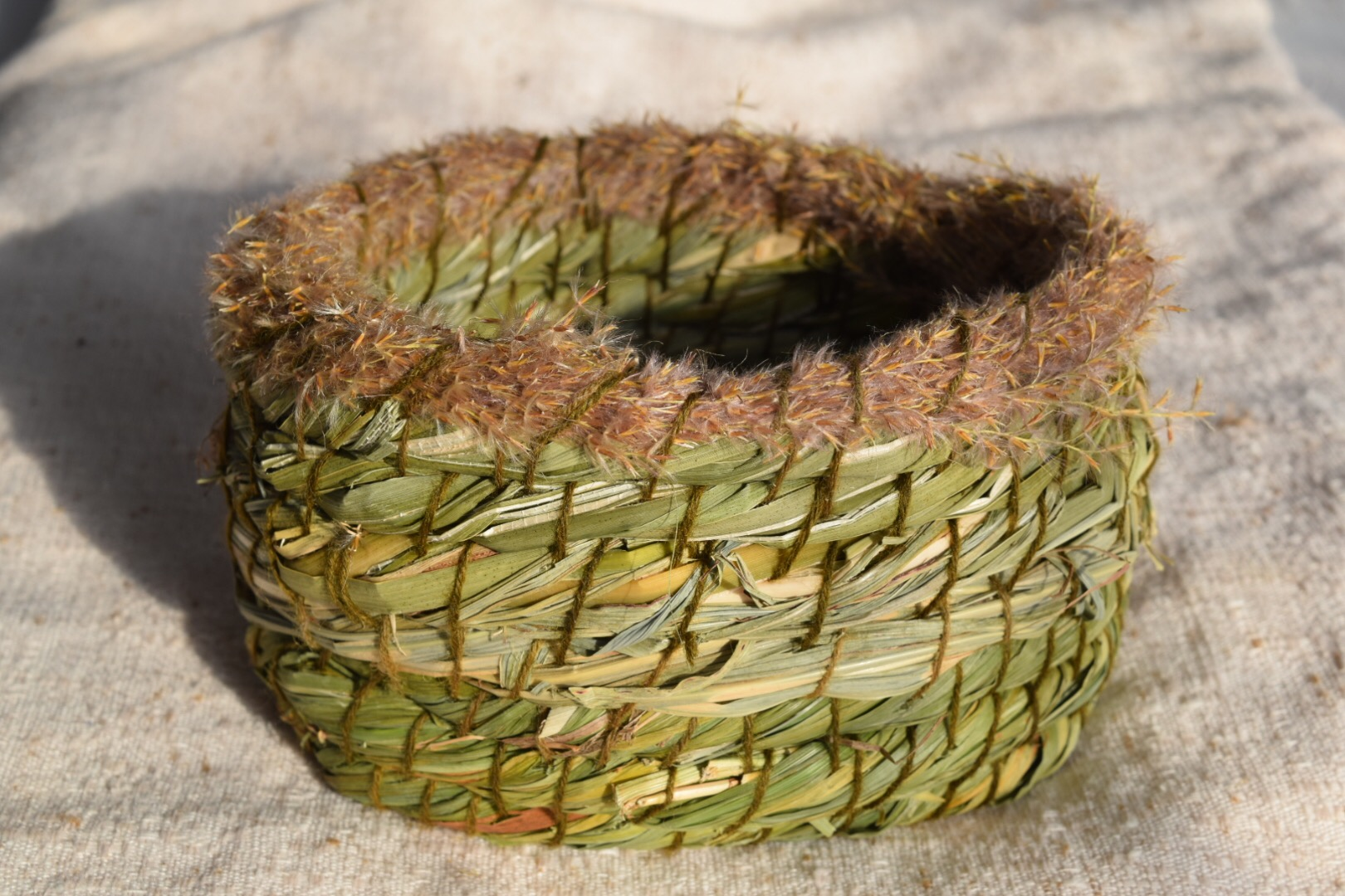 Coiled Basketry Workshop 1