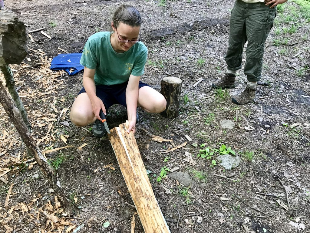 Peeling a basswood log